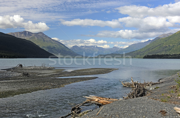 Glacial Stream Entering an Alpine Lake Stock photo © wildnerdpix