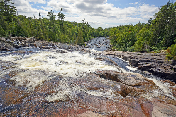 Looking Down a Rushing River on a Sunny Day Stock photo © wildnerdpix