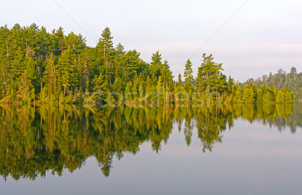 Morning Reflections in the North Woods Stock photo © wildnerdpix