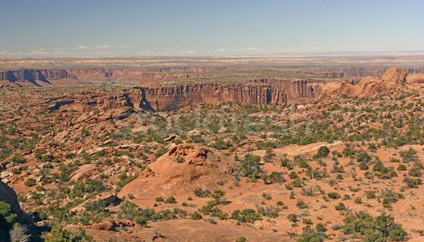 Park Utah natuur landschap woestijn panorama Stockfoto © wildnerdpix
