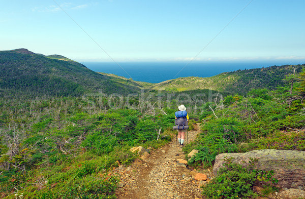 Backpacking to the Ocean Stock photo © wildnerdpix