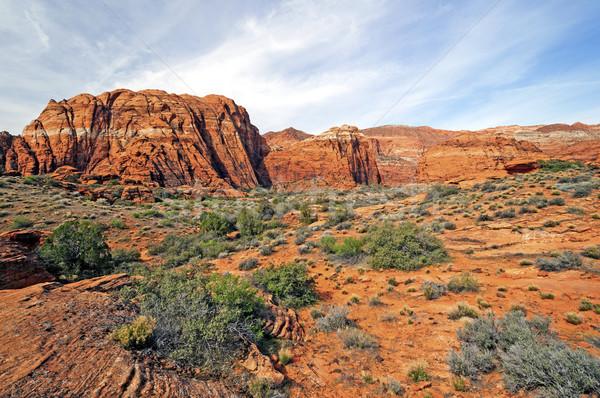 Red Rocks Panorama Stock photo © wildnerdpix