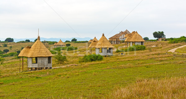 Vacation Huts in Africa Stock photo © wildnerdpix