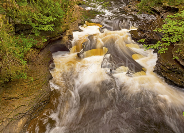 Water and Rocks in a Forest Stream Stock photo © wildnerdpix