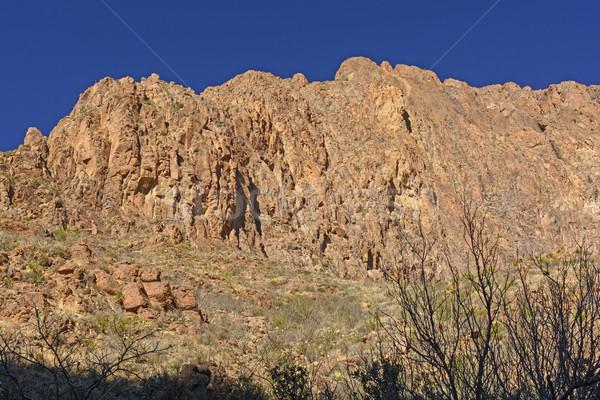 Sole ombra deserto grande parco Foto d'archivio © wildnerdpix