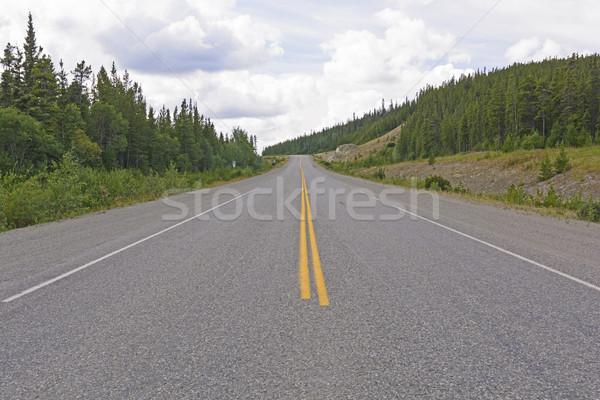 Alaszka autópálya út tájkép járda Stock fotó © wildnerdpix
