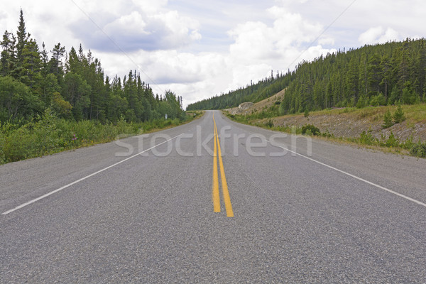 Alasca rodovia estrada paisagem calçada Foto stock © wildnerdpix