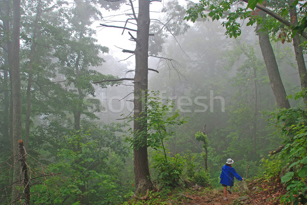 Hiker in the Fog on a mountain trail Stock photo © wildnerdpix