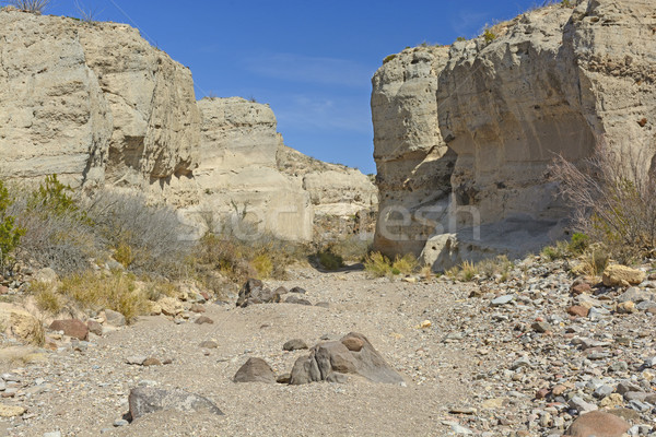 Dry Riverbed in a Desert Canyon Stock photo © wildnerdpix