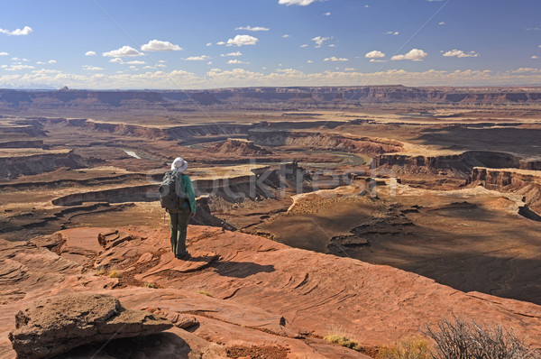 Regarder sur parc Utah nature rivière Photo stock © wildnerdpix