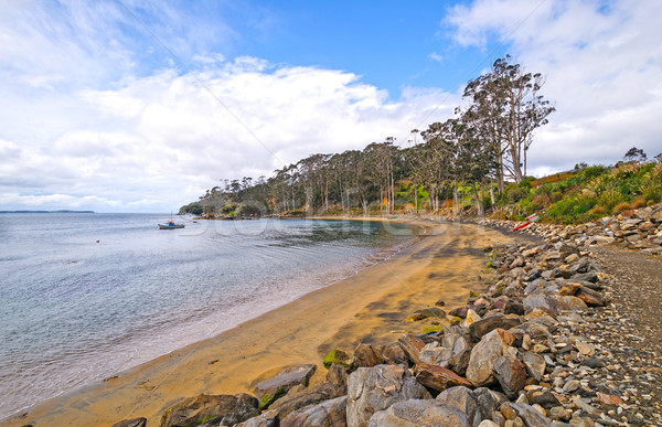 Quiet Cove on a Rustic Coastline Stock photo © wildnerdpix