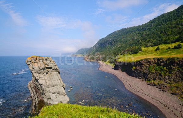 Stock photo: Remote Sea Shore in Newfoundland