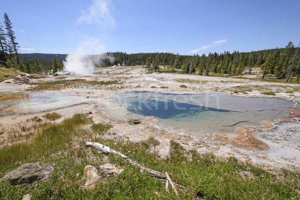 Panorama parque Wyoming natureza paisagem remoto Foto stock © wildnerdpix