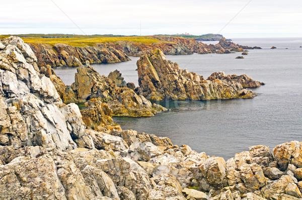 Skał nowa fundlandia wybrzeża Kanada panorama Zdjęcia stock © wildnerdpix
