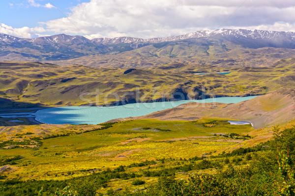 Alpine Lake in the Patagonian Highlands Stock photo © wildnerdpix
