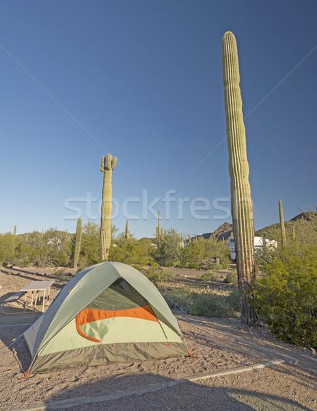 Campsite in a Desert Park Stock photo © wildnerdpix