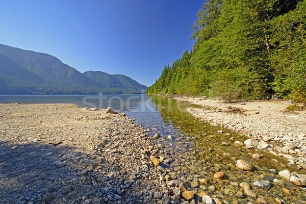 Mountain Lake in Morning Shadows Stock photo © wildnerdpix