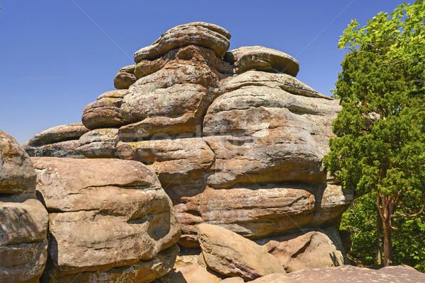 Kumtaşı bahçe kayalar uçurum uzak Stok fotoğraf © wildnerdpix