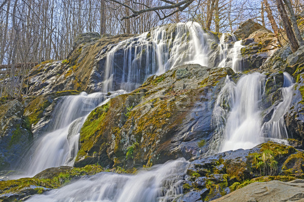 Rushing Cascade in the Early Spring Stock photo © wildnerdpix