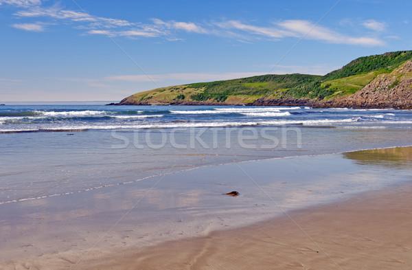 Coastal Beach on a Sunny Summer Day Stock photo © wildnerdpix