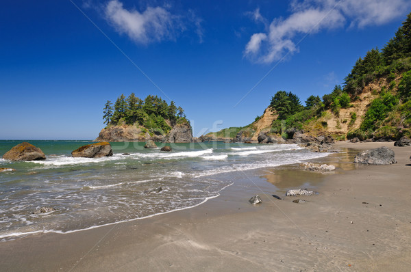 Coastal Waters on the West Coast Stock photo © wildnerdpix
