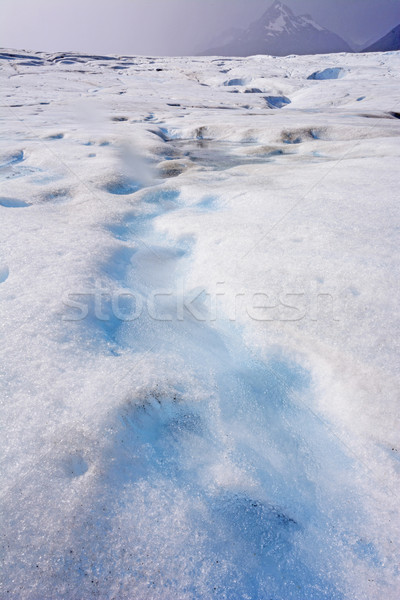 Stream on top of  the Blue and White Ice of an Alpine Glacier Stock photo © wildnerdpix