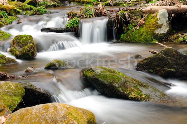 A mountain stream in the spring Stock photo © wildnerdpix