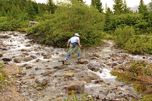 Rock Hopping on a Mountain Stream Stock photo © wildnerdpix