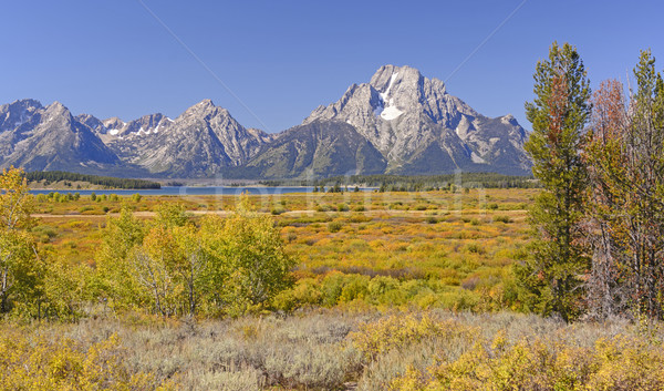 Fall Colors in the Western Mountains Stock photo © wildnerdpix