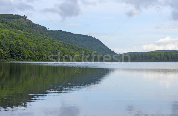 Backcountry Lake in the Sun Stock photo © wildnerdpix