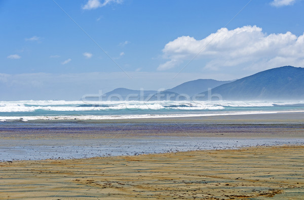 Crashing Waves on a windy day on an Island Beach Stock photo © wildnerdpix