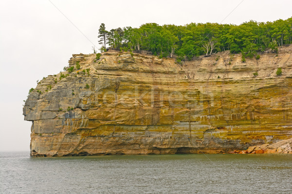Lakeshore Cliff in the Fog Stock photo © wildnerdpix