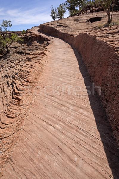Trilha arenito desfiladeiro natureza blue sky caminho Foto stock © wildnerdpix