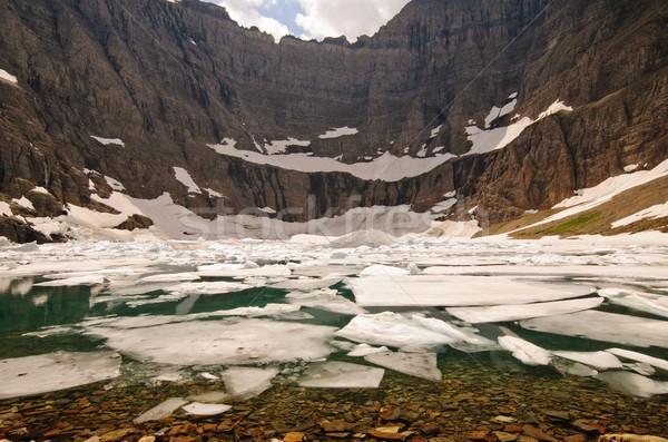Ice on an Alpine Lake Stock photo © wildnerdpix