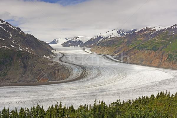 Groot alpine gletsjer zalm brits Stockfoto © wildnerdpix