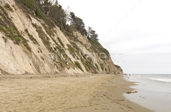 Tranquilo playa nublado día Foto stock © wildnerdpix
