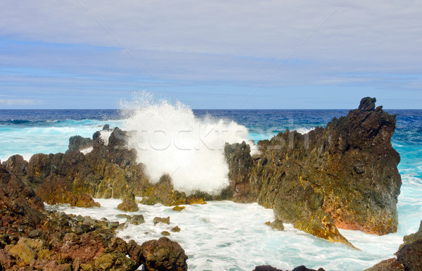 Crashing waves on a Tropical Shore Stock photo © wildnerdpix