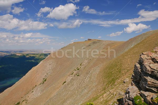High Mountain Tundra on a summer day Stock photo © wildnerdpix