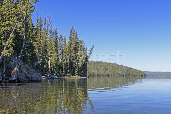 Quiet Lake in the Mountains Stock photo © wildnerdpix