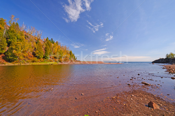 Slow Moving River on a Sunny Day Stock photo © wildnerdpix