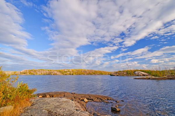 Bright fall skies in the North Woods Stock photo © wildnerdpix