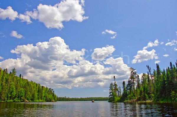 Summer Skies in Canoe Country Stock photo © wildnerdpix