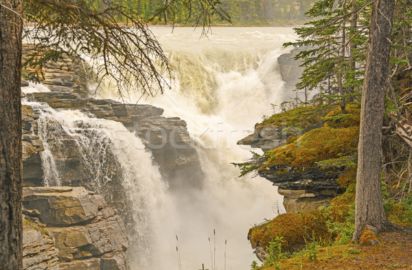 Dramatic Falls in the Mountains Stock photo © wildnerdpix