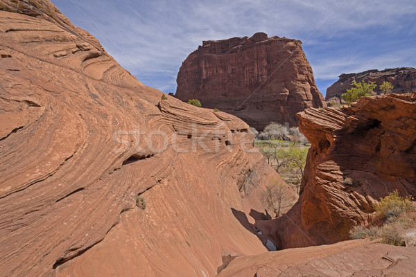 Convoluted Rock in the Desert Stock photo © wildnerdpix