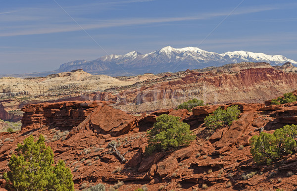Snowy Mountains Behind a Desert Ridge in Spring Stock photo © wildnerdpix