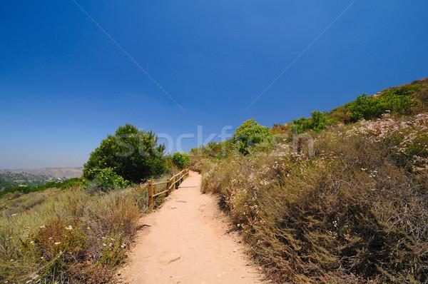 Калифорния горные тропе Сан-Диего парка забор Сток-фото © wildnerdpix