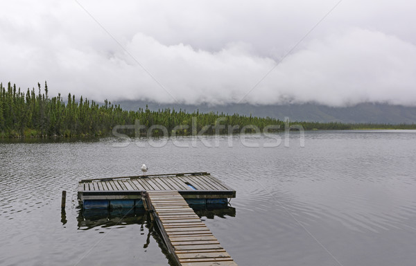 Lonely Dock on a Cloudy Day Stock photo © wildnerdpix