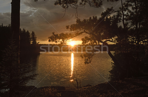 Sun Peeking Through at Sunset Stock photo © wildnerdpix