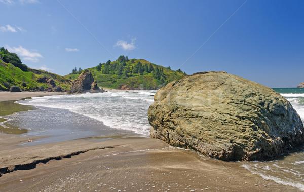 Sand and Rocks on a Pacific Coast Beach Stock photo © wildnerdpix