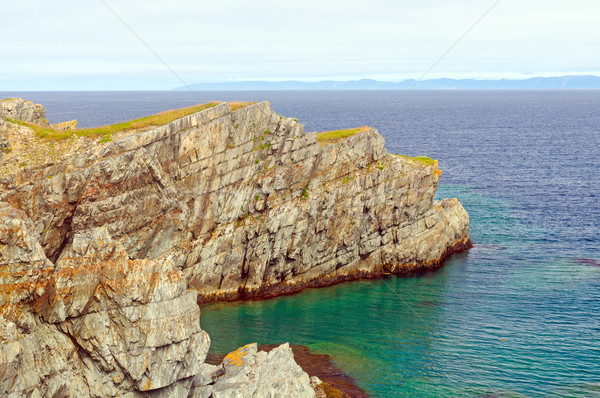 Ocean Cliff on the Coast of Newfoundland Stock photo © wildnerdpix